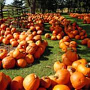 Pumpkin - Happy Thanksgiving Art Print