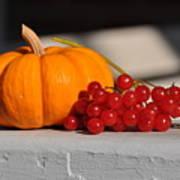 Pumpkin N Berries Art Print