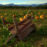 Pumpkin Patch. Art Print