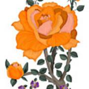 Pumpkin Rose And Violas Art Print