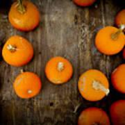 Pumpkin Tops Art Print