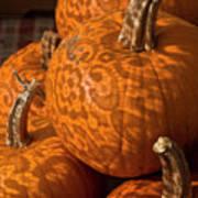 Pumpkins And Lace Shadows Art Print