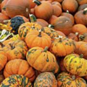 Pumpkins For Sale Art Print