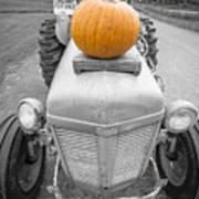 Pumpkins For Sale Vermont Art Print