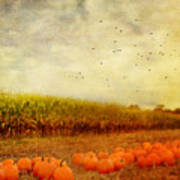 Pumpkins In The Corn Field Print by Kathy Jennings