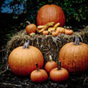 Pumpkins In The Dark Art Print