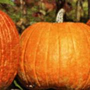 Pumpkins Art Print