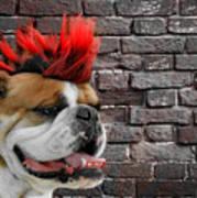 Punk Bully Art Print