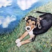 Puppy Max Art Print
