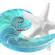 Pure Joy - Starfish With Nautilus Shell Art Print