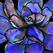 Purple Agave Art Print