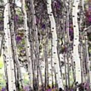 Purple Aspens Art Print