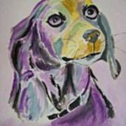 Purple Beagle Art Print