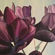 Purple Blooms Cmd1008 Art Print