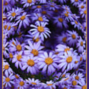 Purple Daisy Abstract Art Print