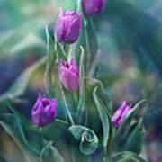 Purple Dignity Art Print