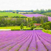 Purple Fields Of Love Art Print