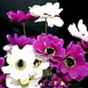 Purple Flowerspurple Flowers Art Print