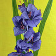 Purple Gladiolas Art Print