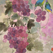 Purple Grapes And Blue Birds Art Print