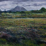 Purple Heather And Mount Errigal From Dore Co. Donegal Ireland   Art Print