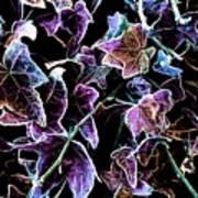 Purple Ivy Art Print