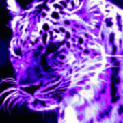 Purple Jaguar Art Print
