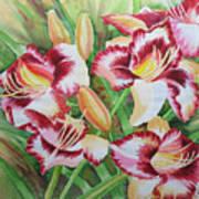 Purple Lilies.2007 Art Print