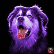 Purple Malamute Dog Art - 6536 - Bb Art Print