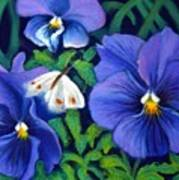 Purple Pansies And White Moth Art Print