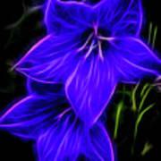 Purple Passion Art Print by Joann Copeland-Paul