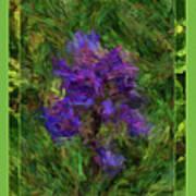 Purple Png Flower Art Print