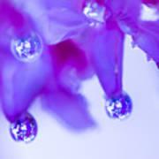 Purple Rain Purple Rain Art Print