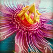 Purple Tropic Art Print