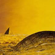 Pyramid Oil Art Print