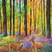 Quantic Dream Art Print