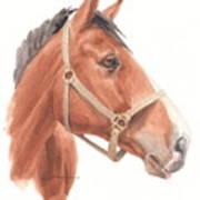 Quarter Horse Face Watercolor Portrait Art Print