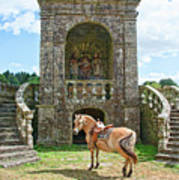 Quelven Village Square, Awaiting His Owner, Brittany, France Art Print