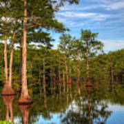 Quiet Afternoon At The Bayou Art Print
