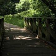 Quiet Path Bridge Art Print