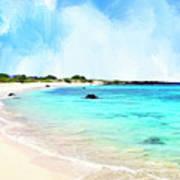 Quiet Shore Near Makalawena Art Print