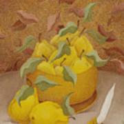 Quinces   2006 Art Print