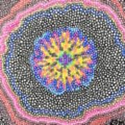 Rabbit's Eye View Art Print