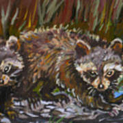 Raccoons From River Mural Art Print
