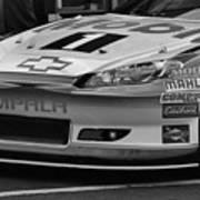 Race Car Front Art Print
