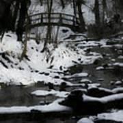 Rachel Carson Trail  Art Print