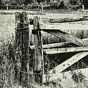 Rail Fence Art Print