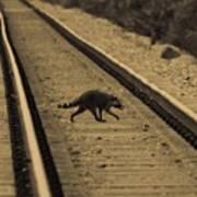 Railroad Bandit Art Print
