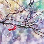 Rain Berries Art Print