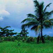 Rain Cloudsover Dominica Art Print